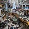 Shopping Malls/High Street Stores