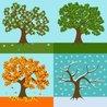 Seasons (Spring, Summer, Autumn, Winter)